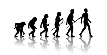 Theory-of-Human-evolution